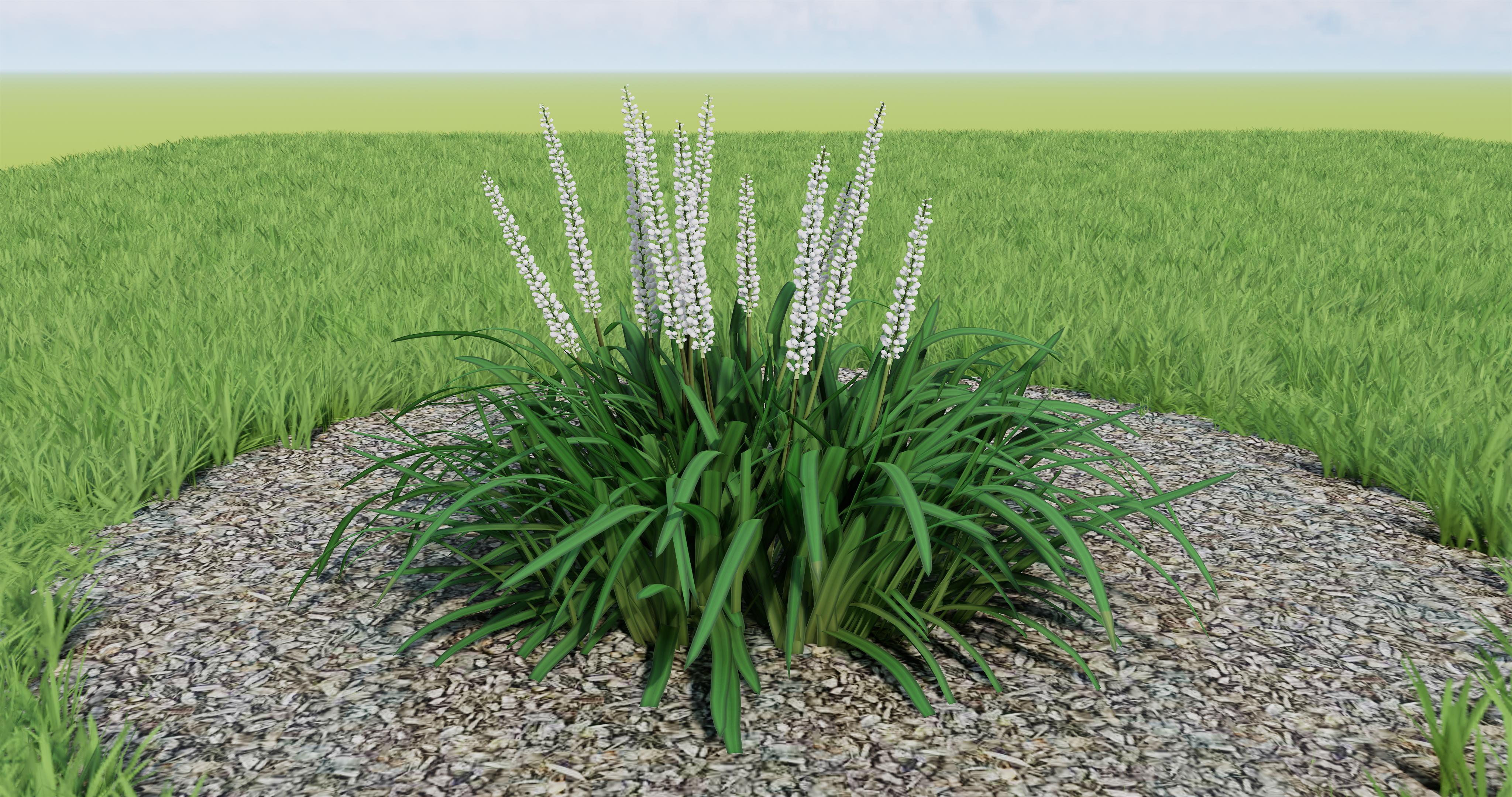 FREE Enscape Plants - SketchUp - Enscape Community Forum
